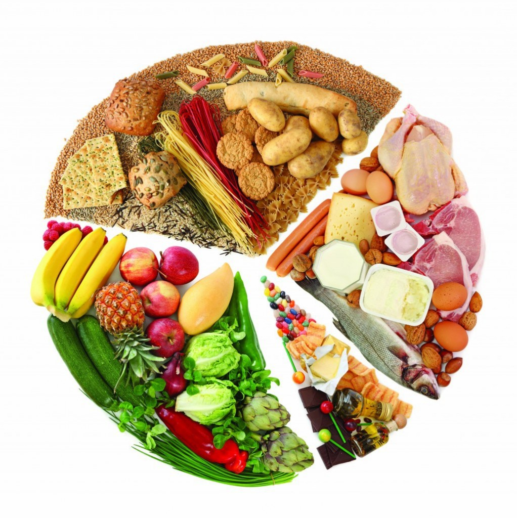 herbert shelton les combinaisons alimentaires pdf
