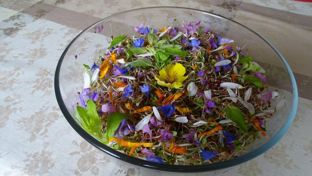 Salade fleurs Mahboob